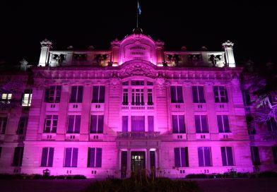El Colegio Nacional se vistió de violeta